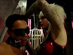Slave dude bound, gagged, blindfolded by Mistress Lola for some fun