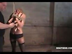 Bondage hogtied babes stripped